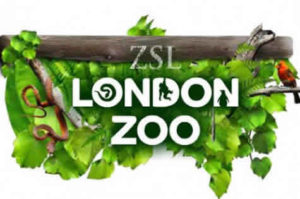 London Zoo for families in London
