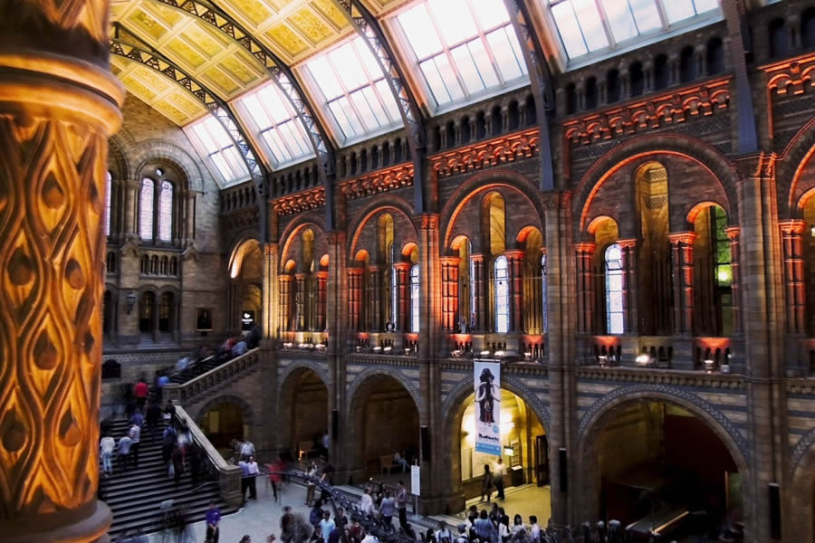 Natural History Museum - Halloween events