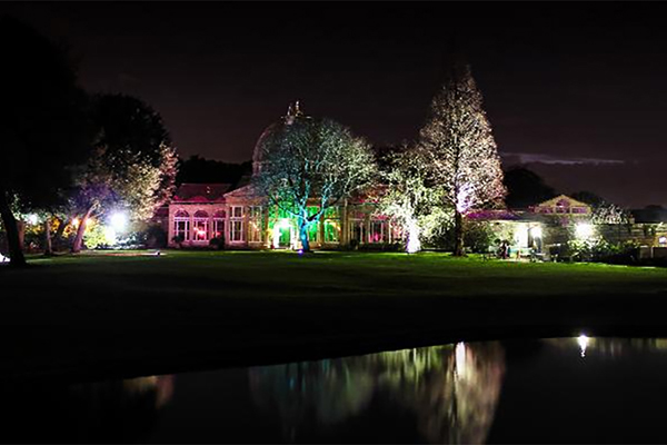 Syon Park Enchanted Woods