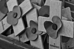 black and white poppies in remembrance